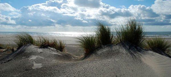 about brigantine beach properties brigantine real estate